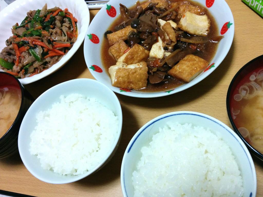 肉と豆腐のごはん